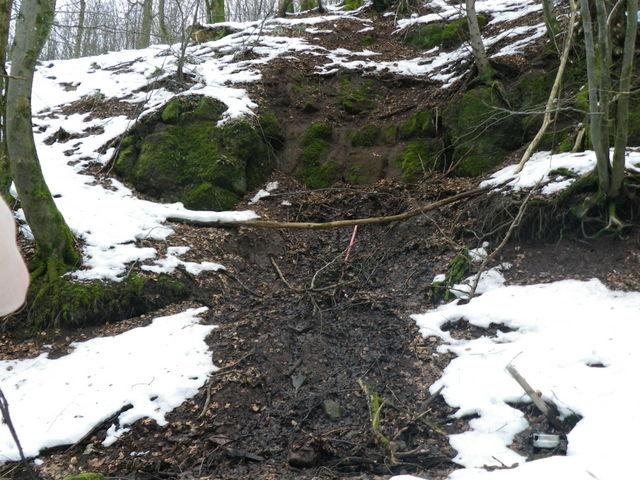 Source de la Schernetz en contrebas de l'Ungersberg